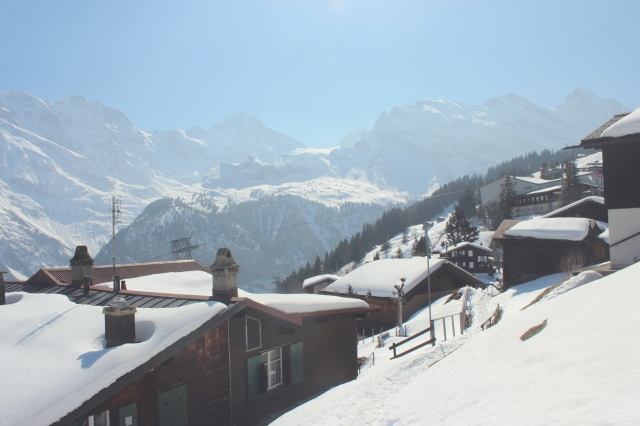 Swiss28