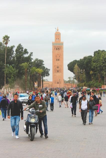 Maroc54
